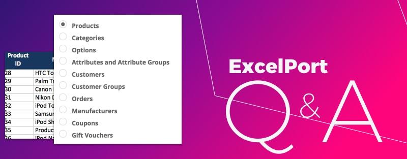 ExcelPort Q&A - Blogs | iSenseLabs